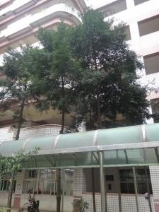 DSC01546